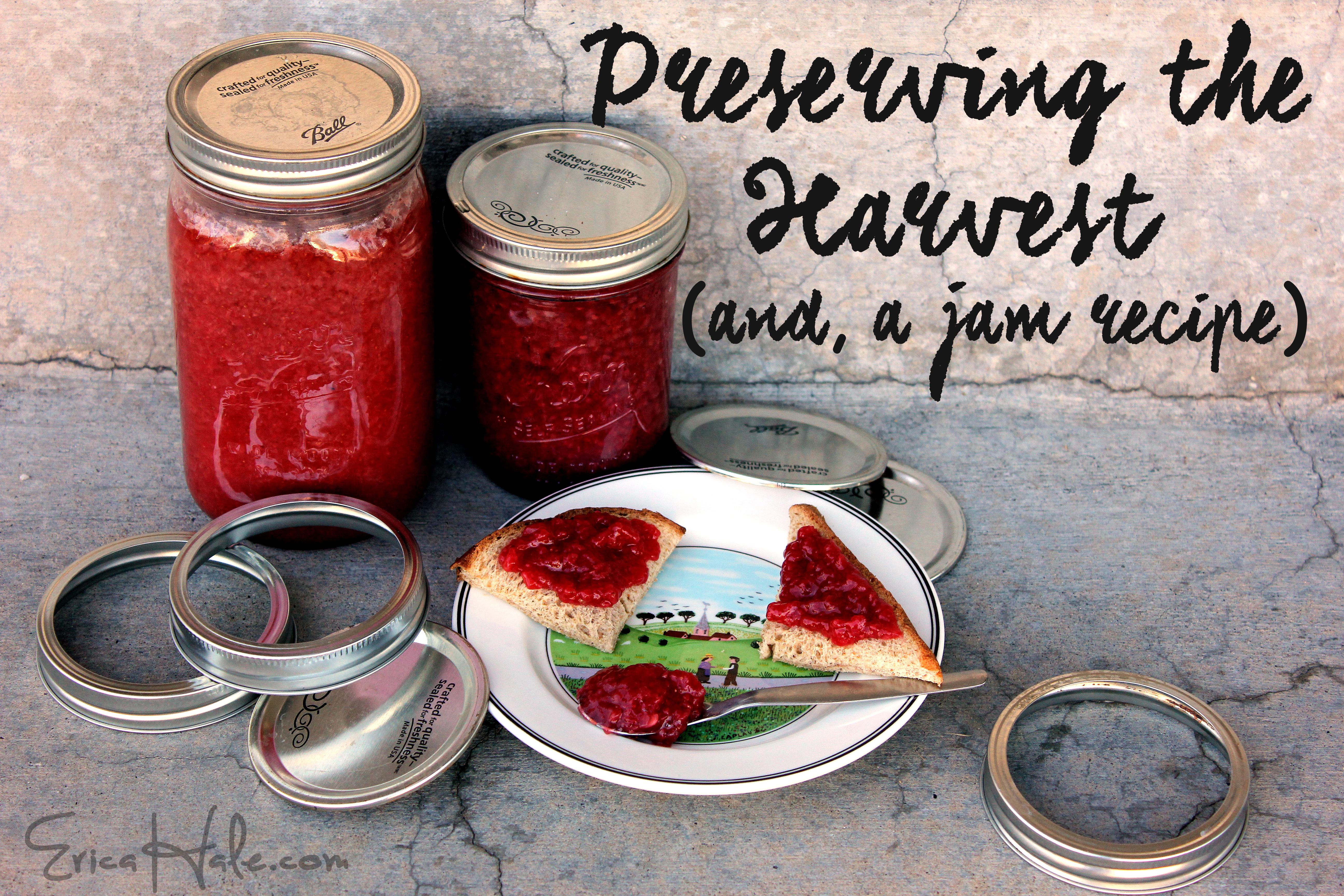 Preserving the Harvest, and a low-sugar jam recipe